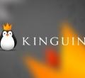 Team Kinguin в dota 2