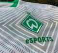 Verder eSports, verder fifa