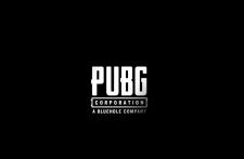 Сколько зарабатывает PUBG Corporation